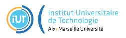 IUT_Aix_Marseille.PNG